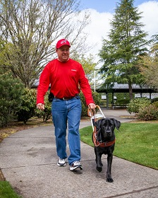 GDB client Wayne Sibson walks along a grass-lined path with his black Lab guide dog, Orion.