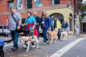 GDB alumni walk the streets of Portland with their guide dogs