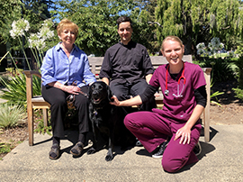 Three people and a retired black Lab guide dog