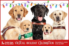 3 guide dogs & 2 pups in training in front of festive lights