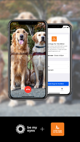 A view of the Be My Eyes app on an iPhone. The app features a photo of two working guide dogs plus the Be My Eyes and GDB logos.
