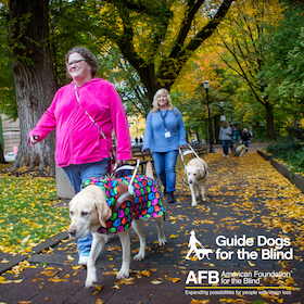 Two female guide dog users walk their yellow Labs amongst the fall-colored trees with their guide dogs. A GDB logo is in the lower-right corner of the photo.