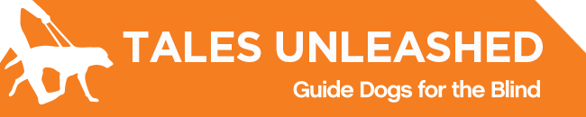 White GDB logo, Tales Unleashed newsletter title with a graphical image of a guide dog and handler on a orange background