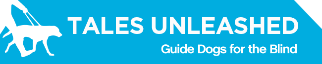 White GDB logo, Tales Unleashed newsletter title with a graphical image of a guide dog and handler on a blue background