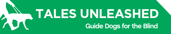 White GDB logo, Tales Unleashed newsletter title with a graphical image of a guide dog and handler on a green background