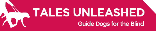 White GDB logo, Tales Unleashed newsletter title with a graphical image of a guide dog and handler on a magenta background