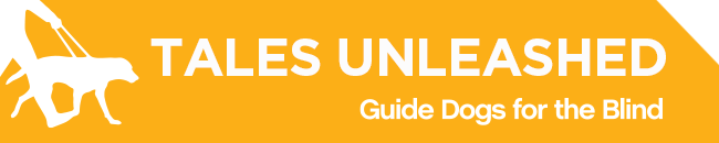 White GDB logo, Tales Unleashed newsletter title with a graphical image of a guide dog and handler on a yellow background