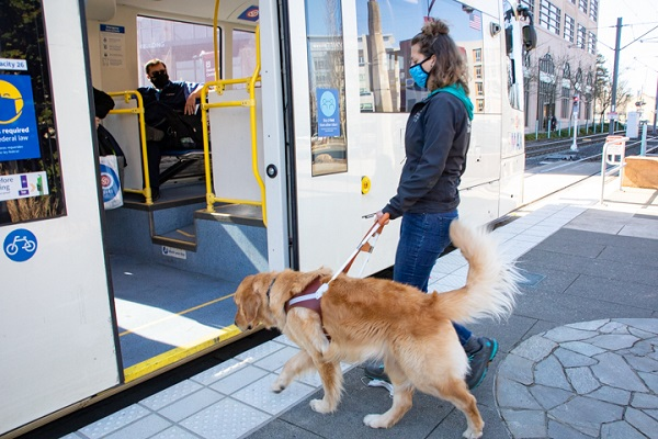 Guide Dog Mobility Instructor Megan Dodder working with a guide dog to board a TriMet train in Portland.