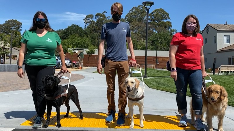 Three guide dog mobility instructors with guide dogs.